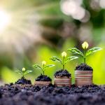 Nachhaltige Schuldnerberatung